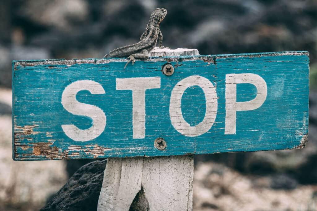 Stop stressen i at komme igen